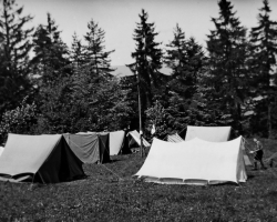 APV_Sammlung_1934 PFILA Fringeli