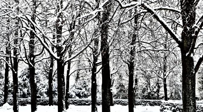 Januar – 's wätteret und stürmt