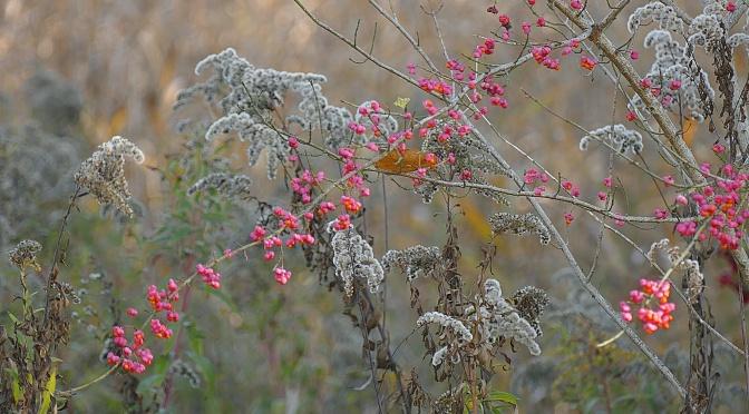 Oktober – auch der Herbst hat noch seine warmen Tage